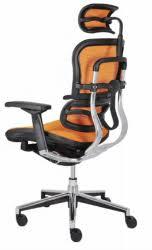Orthopaedic Armchairs Orthopaedic Office Chair Modern Home Interior Design