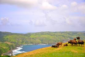 proxy - Batanes - Philippine Video and Music