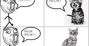 Close Enough Meme - luxury close enough meme home close enough meme talking to cat