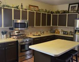 Best White To Paint Kitchen Cabinets Finest Image Of Wondrous Satisfactory Munggah Eye Catching