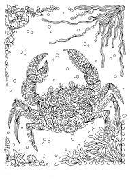 best 25 under the sea drawings ideas on pinterest jellyfish