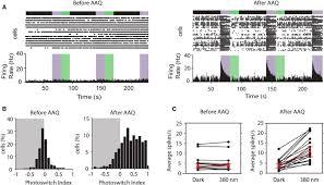 Blind Test En Ligne Photochemical Restoration Of Visual Responses In Blind Mice