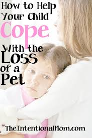 the loss of a pet how to help your child cope with the loss of a pet