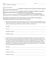 parts of an experiment worksheet