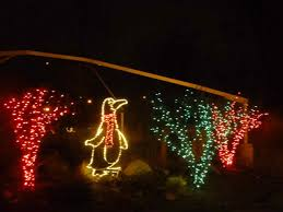Potter Park Zoo Lights by And The Animals Will Love It If You Do Austin Dern