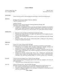 Dental Receptionist Resume Skills Dentist Receptionist Resume Example