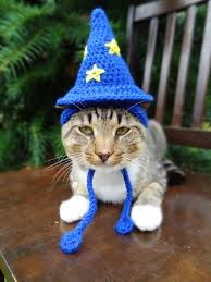 cat costume for halloween wizard cat hat wizard cat costume wizard hat for cats