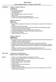resume template for managers executives den resume importort documentation executive sle manager clerk