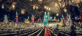 brookfield zoo winter lights zoo lights urbanmatter