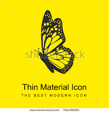 butterfly side view detailed wings bright stock vector 794298985