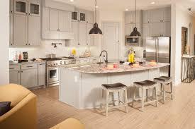 viridian classics arlington tx home builder new homes david