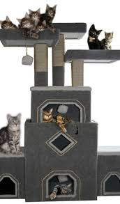our cat trees and cat furniture are handmade cat condos and built