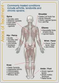 Ankle Anatomy Ligaments Injuries Archives Ocean Park Natural Therapies Clinic