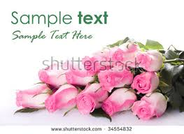 Dozen Of Roses Happy Birthday Card Bouquet Pink Peonies Stock Photo 638135113
