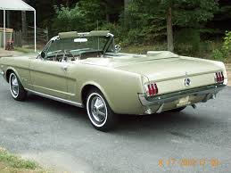 honey gold paint thoughts vintage mustang forums