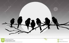 birds sitting on a branch stock vector illustration of jungle