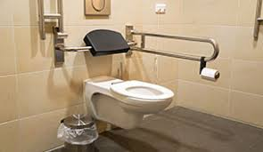 Bathroom Handrails For Elderly 10 Tips For Bathroom Safety For Seniors