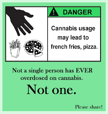 Legalize Weed Meme - 230 best marijuana memes images on pinterest memes de marihuana