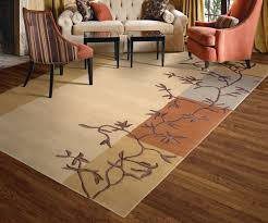 Area Rug Cleaning Tips Lcc Fr Area Rug Cleaning Tips Louisvile Carpet Cleaning 502 585 2444