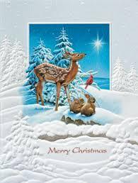 pumpernickel greeting cards pumpernickel press boxed christmas cards followin https