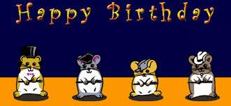 happy birthday funny gif happy birthday hamsters best images