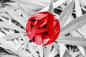 Colorado Flag Marijuana Japan Flag On Cannabis Background Drug Policy Legalization