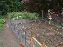vegetable garden fencing ideas landscape design