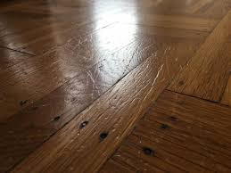 wood or laminate flooring for dogs meze