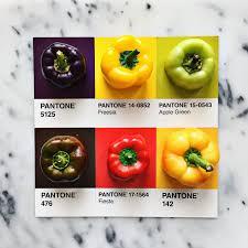 lucia litman u0027s art shows natural diversity of fresh food civli eats