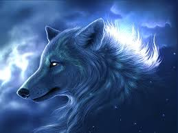 moving wolf wallpapers wallpapersafari