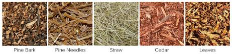Types Of Garden Rakes - how to mulch learn the best types of mulch and how to apply it