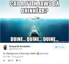 Fell Into Some Feelings Meme - 17 times irish people proved gaeilge is the funniest language