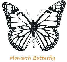 coloring page butterfly monarch color page butterfly monarch butterfly coloring pages free color