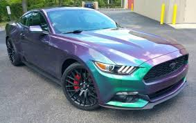 Black Mustang With Pink Stripes Photo Gallery Addiption Tampa Florida U0027s Auto Customization