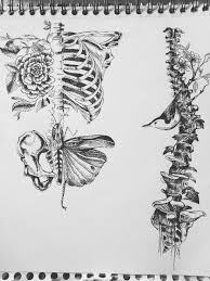 awesome drawings google search amazing drawings pinterest