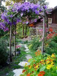 Trellis For Wisteria Best 25 Garden Arch Trellis Ideas On Pinterest Arch Trellis