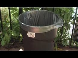 How To Get Rid Of Mosquitoes In Backyard by Home Pest Control How To Keep Bugs Wasps Bees And Mosquitoes