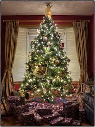 free images winter gift box tree season