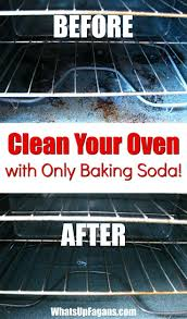 Kitchen Cleaning Tips Best 25 Kitchen Cleaning Ideas On Pinterest Kitchen Cleaning