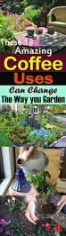 these 18 amazing coffee uses can change the way you garden