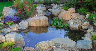 how much does a pondless waterfall or a fish pond cost 4 real