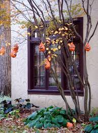 Motion Activated Outdoor Halloween Decorations by 24 Indoor U0026 Outdoor Tree Halloween Decorations Ideas