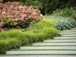 Small Shrubs For Front Yard - top garden trends for 2017 garden design