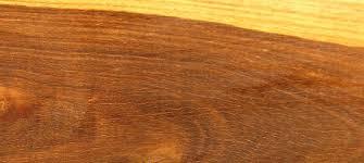 woodfinder
