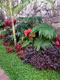Tropical Gardening Ideas Tropical Landscape Design Ideas Nurani Org