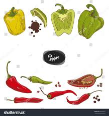 hand drawn sketch style peppers set stock vector 683326855
