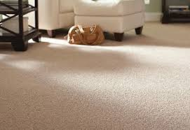home depot interior carpet design amazing home depot carpet measure home depot