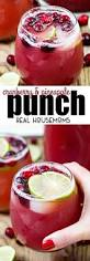 Totally Awesome Party Punch Ideas Best 25 Vodka Punch Ideas On Pinterest Punch Recipes