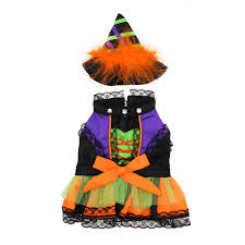 halloween witch dog costume with same day shipping baxterboo