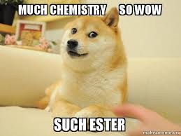 Chemistry Dog Meme - much chemistry so wow such ester doge make a meme